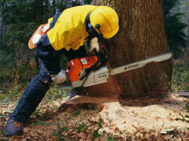 CHAINSAW HIRE